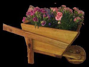 Bepflanzbare Holzschubkarre